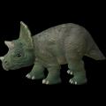 Triceratops Cub