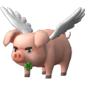 Cerdo gruñón