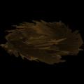 Nid  d'oiseau