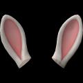 Hasenohren