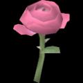 """Rose """"Pink Panther"""""""