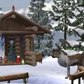 W kleiner Weihnachtsmarkt