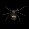 Dev Örümcek