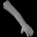 Tattoo (Arm) (Left)