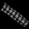 Tato (Lengan)