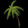 Mittelgroße Palme, gebeugt