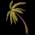 Kleine Palme, gebeugt