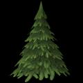 Mittelgroßer Tannenbaum