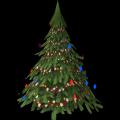 Medium Fir Tree