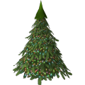 Small Fir Tree