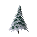 Medium Snowy Tree
